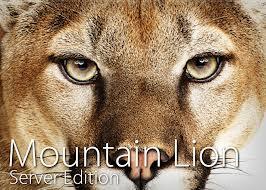 mountain lion server