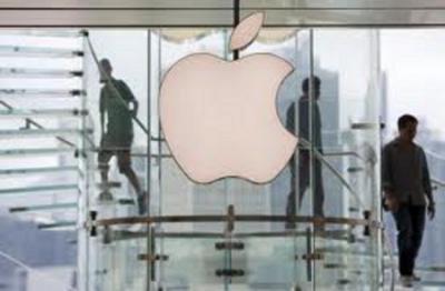 Apple 2013